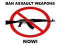 Council Calls for Ban on Assault Weapons